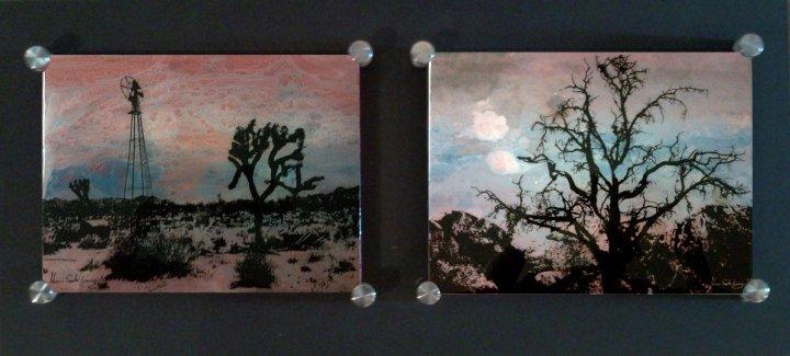 "A Dead Desert Night in Joshua Tree #2 20"" x 34"", Diptych Mixed Media on Glass $350"